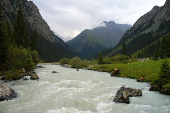 Altai. The White river